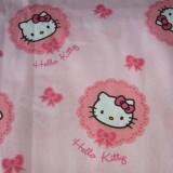 02-1004_Hello Kitty